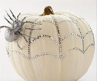 Pretty Spider Pumpkin