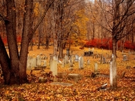 Autumn grave yard