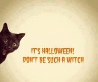 Its halloween dont be such a witch