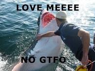 No gtfo