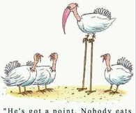 Nobody eats a flamingo on thanksgiving