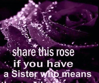 share this rose if you have a sister