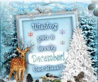 A lovely December