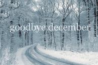 Goodbye December