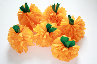 Pumpkin pompoms