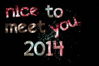 Nice to meet you 2014