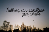 Nothing can swallow you whole