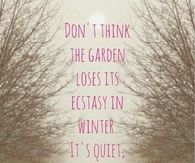 Don't think the garden loses it's ecstasy in winter,