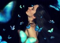 Among butterflies