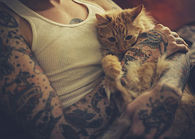 Tattoos and Cat