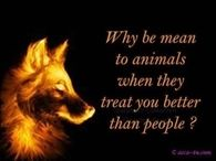 why be mean to animals
