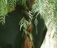 Nature braid
