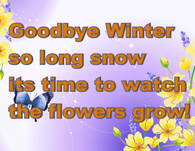 Goodbye Winter so long snow