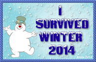 I survived Winter 20114