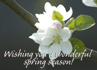 Wishing you a wonderful Spring season