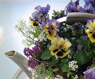 Teapot filled with Spring Flowers
