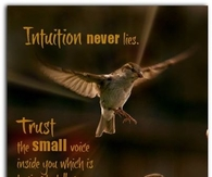 intuition never lies