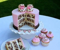 Cheetah print cake and cupcakes