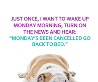 Mondays Cancelled