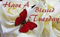 have a blessed tuesday