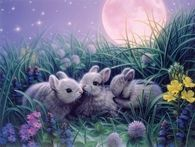 Three Sweet Little Bunnies by Kirk Reinhert