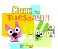 Cheers to Tuesday