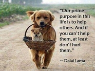 Our prime purpose in life
