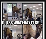 Guess what day it is