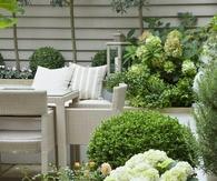 Large floral planters