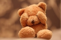 Cute Teddy Bear