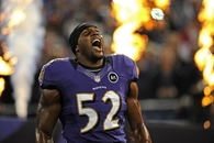 2x Champion Ray Lewis Baltimore Ravens LB