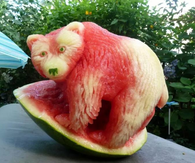 Watermelon bear
